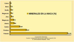 Minerales presentes en la maca