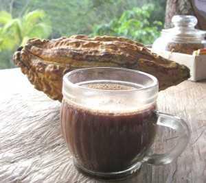 Maravillas del cacao recetas sencillas y ricas