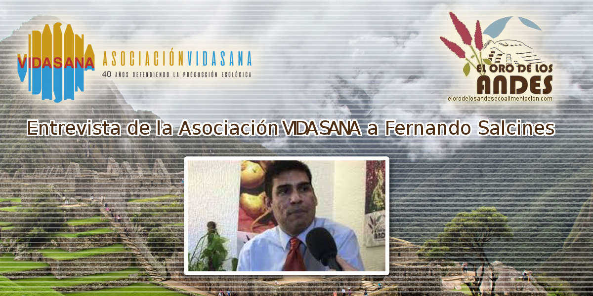 Entrevista a Fernando Salcines el oro de los andes de Vida Sana