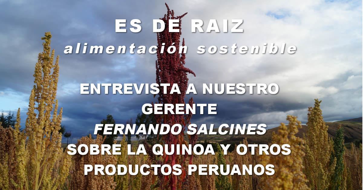 Entrevista de ES de raíz a Fernando Salcines gerente del oro de los andes