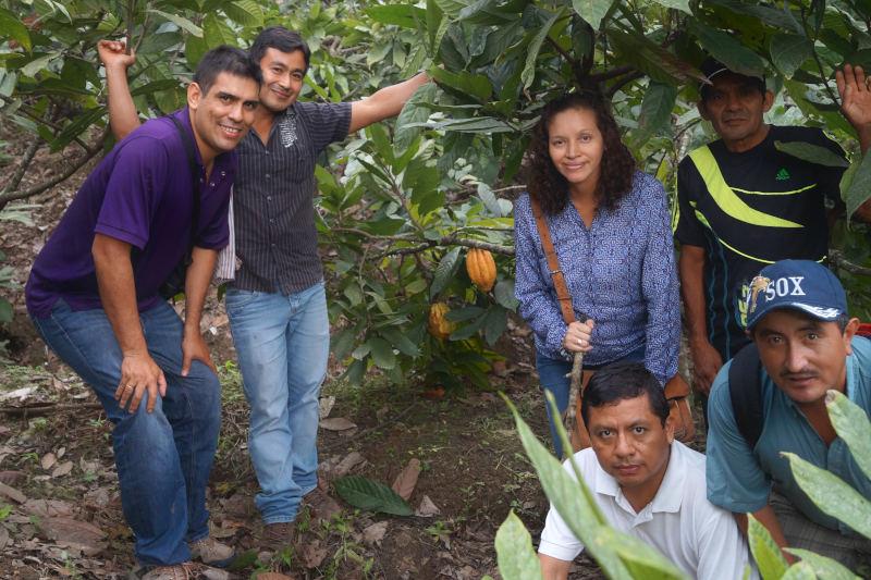 Agricultores de cacao criollo en la plantación de la selva peruana