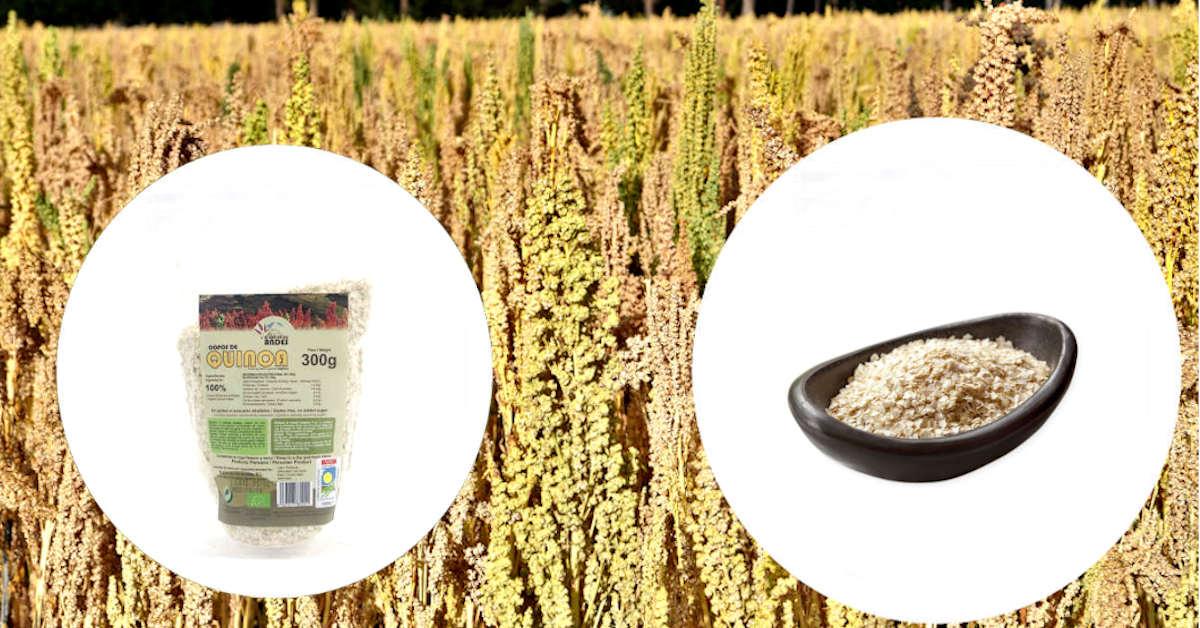 Beneficios de los copos de quinoa
