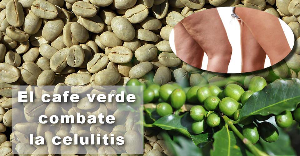 El cafe verde ayuda a eliminar la celulitis y las estrias